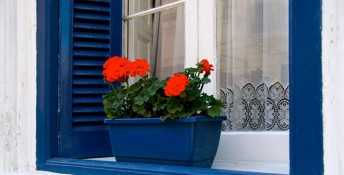 Window with blue frame and shutter and flowerbox, Image: 180166872, License: Royalty-free, Restrictions: , Model Release: no, Credit line: Profimedia, Stock Budget